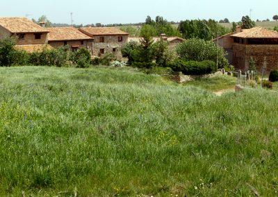 Arroyo-Cerezo-24